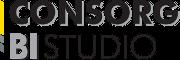 Logo systemu: CONSORG BI Studio