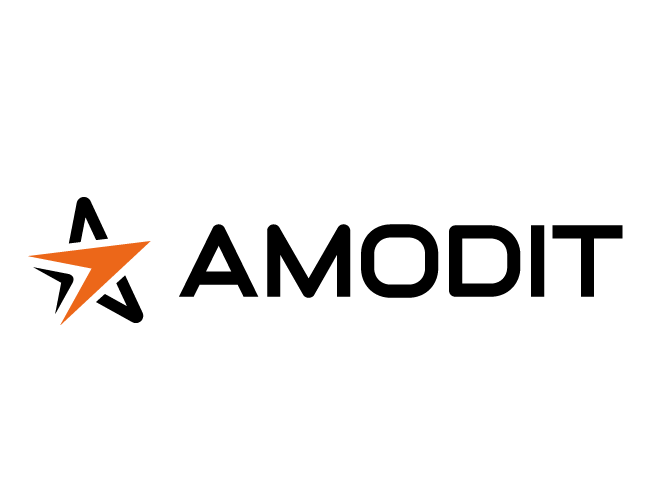 Logo systemu: AMODIT